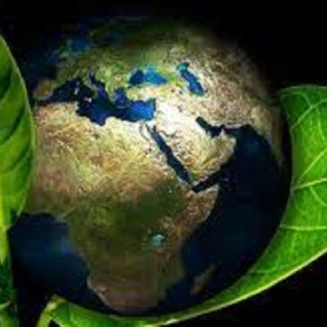Sustentabilidade Grandes empresas pedem protagonismo do Brasil na agenda ambiental